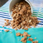 CEREAL-NUT SNACK MIX